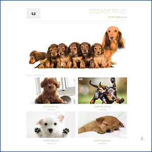 puppyscreenshot